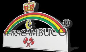 CAMISA-EM-COREL-COREL-18-02